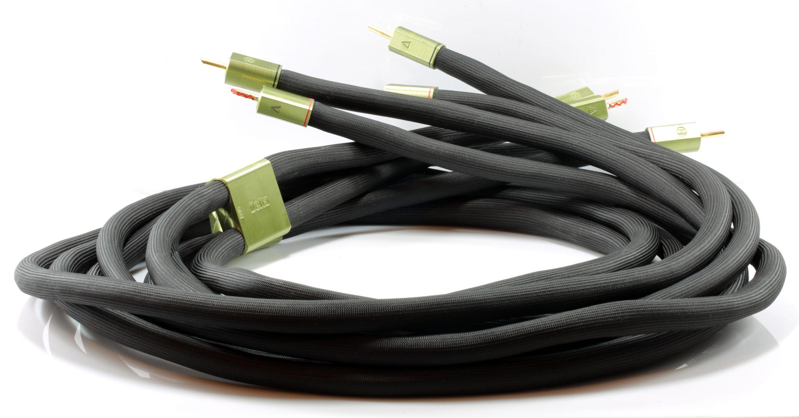 Delta câble d'enceintes HP speaker Odeion Cables